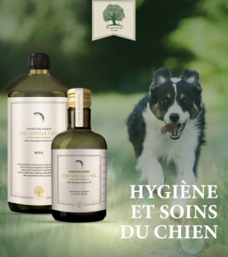 Hygiènes et soins du chiens