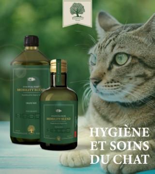 Hygiènes et soins du chats