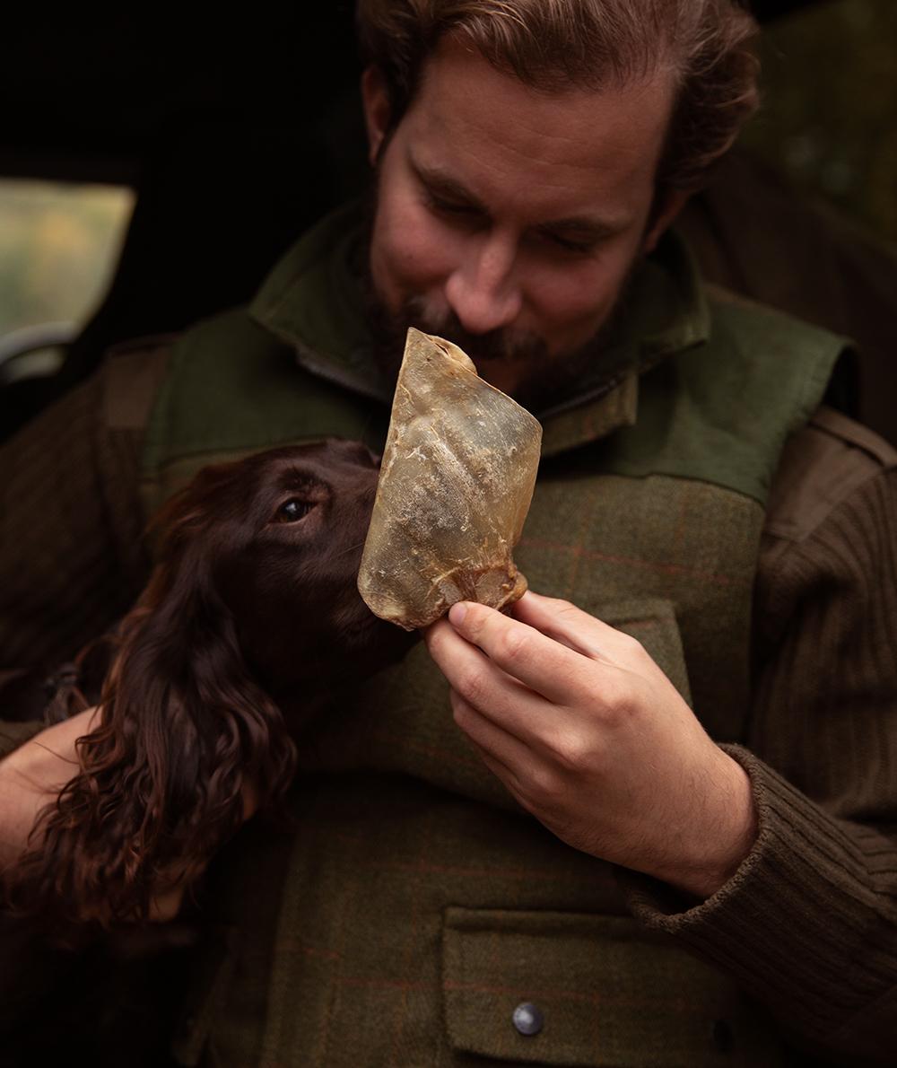 Donner une friandise Cow Delights à son chien en récompense