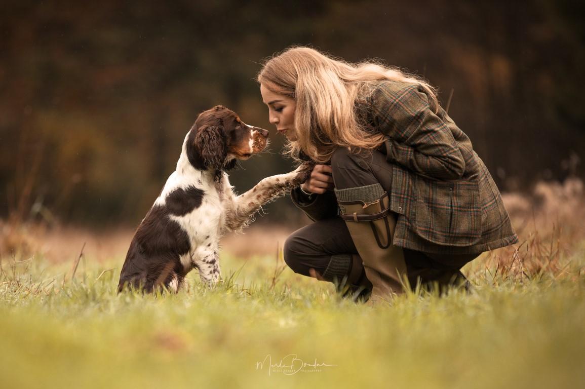 Protéger son chien des allergies