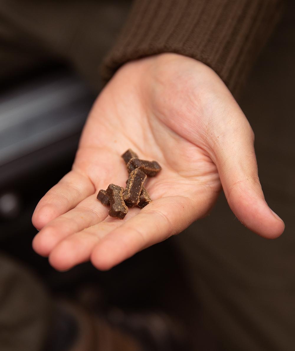 Offrir des friandises Duck Mini Delights en récompense